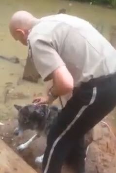 Officer Saves Scared Dog from Drowning