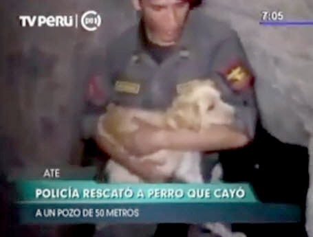 Police Officers Rescue Dog from Well