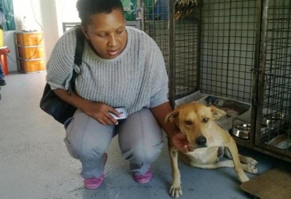 Photo Credit: Mdzananda Animal Clinic