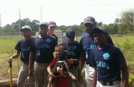 Baseball Team Saves the Day Rescuing Trapped Dog