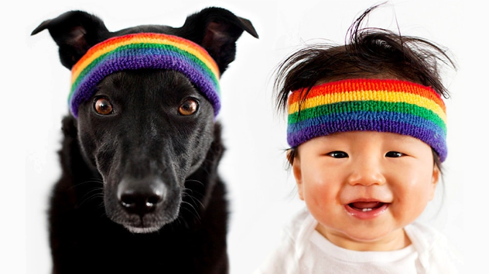 Rescue Dog and Baby Besties Take the World by Storm