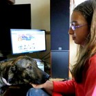 13-Year-Old Uses Facebook to Save Romanian Strays