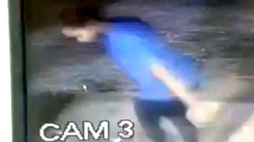 4.2.14 - Woman Punches Dog Outside Shelter1