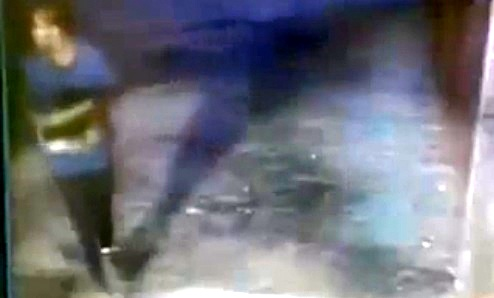 4.2.14 - Woman Punches Dog Outside Shelter2