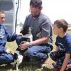 Family Prayers Answered: Oreo the Dog Survives Deadly Arkansas Tornado