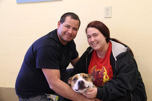 Reckless, Charles, and Elicia James when reunited at the shelter. Photo Credit: Rusty Rembrandt Studio