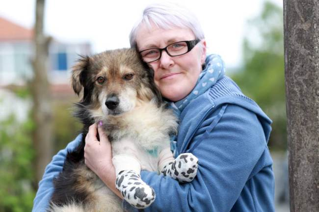 British Woman Raises Funds, Rescues and Transports Abused Romanian Dog