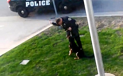 5.1.14 - Cop Abuses K-9 10
