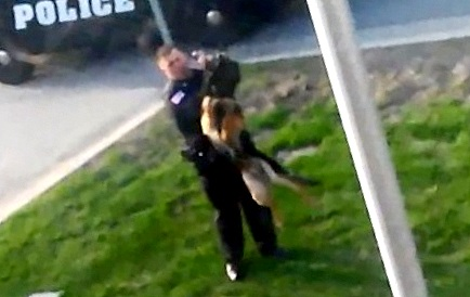 5.1.14 - Cop Abuses K-9 11