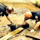 Heroic Officers Save Senior Dog Struggling in Mud for 60 Hours