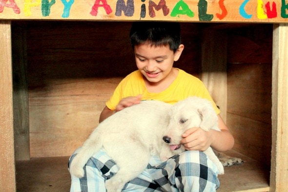 5.18.14 - Filipino Boy Builds No-Kill Shelter in His Garage13