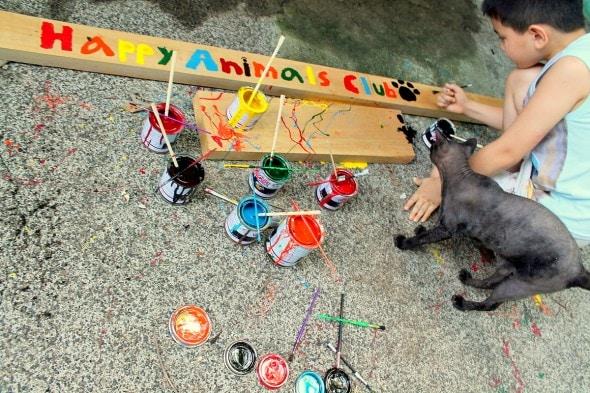 5.18.14 - Filipino Boy Builds No-Kill Shelter in His Garage5
