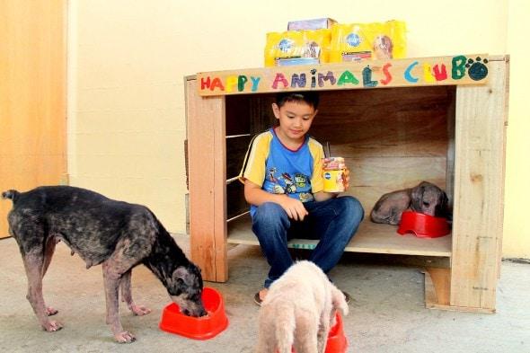 5.18.14 - Filipino Boy Builds No-Kill Shelter in His Garage9