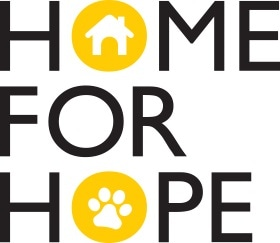 Ikea Teams Up With Several Shelters to Promote Adoption