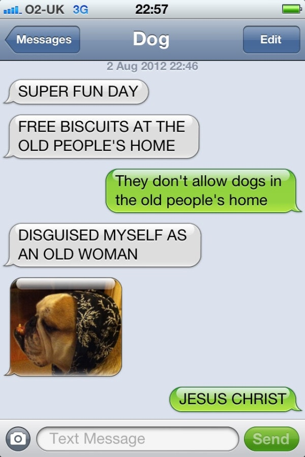 Nutro Ultra Dog Food >> 21 Best Texts from the Dog - LIFE WITH DOGS