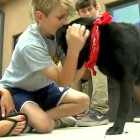 Teen Boys Save Abandoned Dog Left to Die