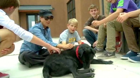 5.29.14 - Teen Boys Save Dying Dog3