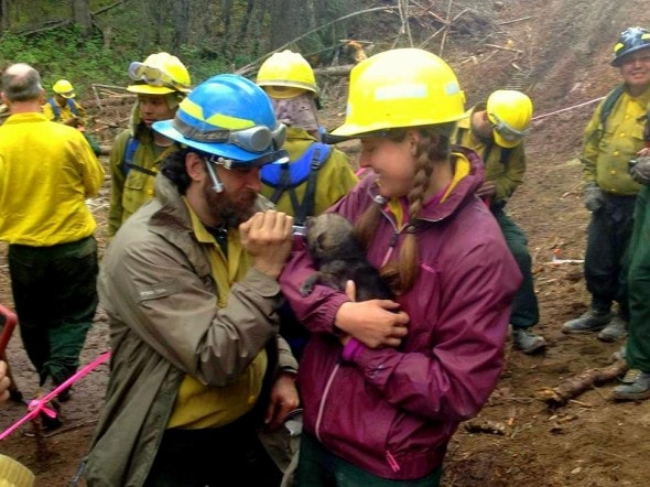 5.31.14 - Alaskan Firefighters Rescue Wolf Puppies6