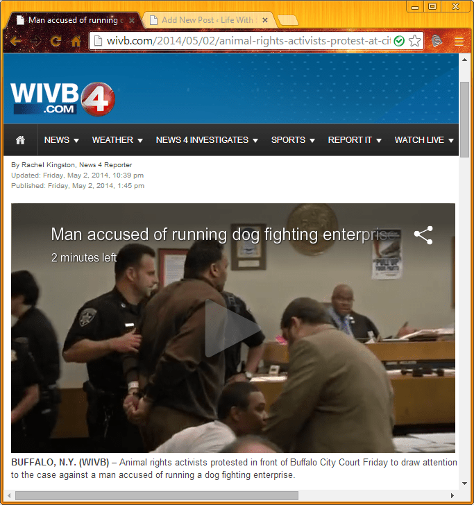 Man Accused of Running Dog Fighting Ring Appears in Court