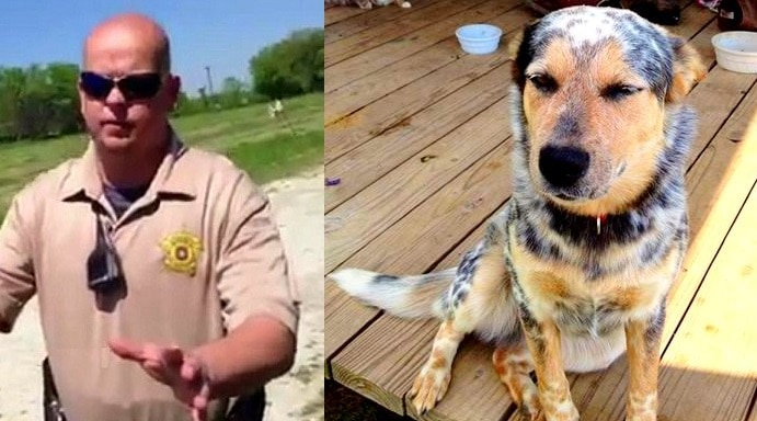 Cattle Dog-Killing Cop Indicted on Animal Cruelty Charge