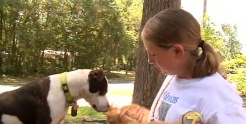 Teenager Starts Own Rescue Center to Save Homeless Pets