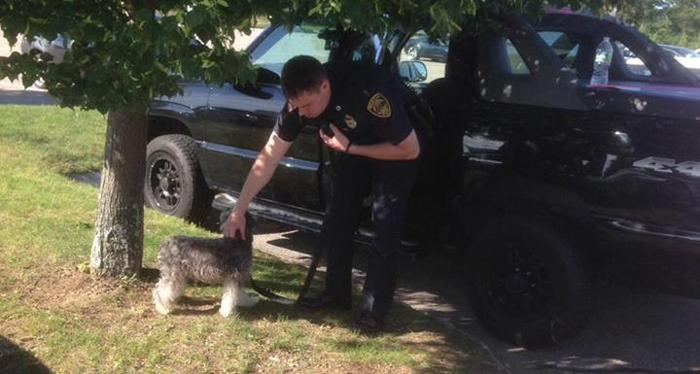 Cop Breaks into Parked Truck to Save Dog