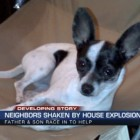 Eight-Pound Chihuahua Survives House Explosion