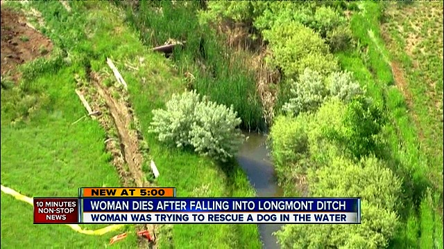 Woman Gives Her Life to Save Drowning Dog