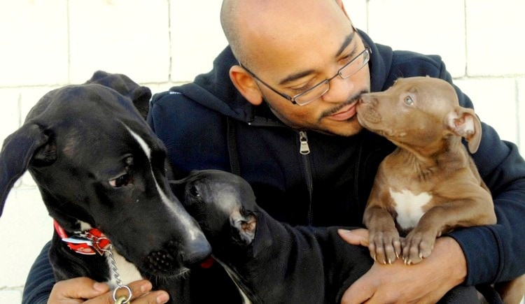 Bronx Man Cashes in 401k to Save Shelter Dogs