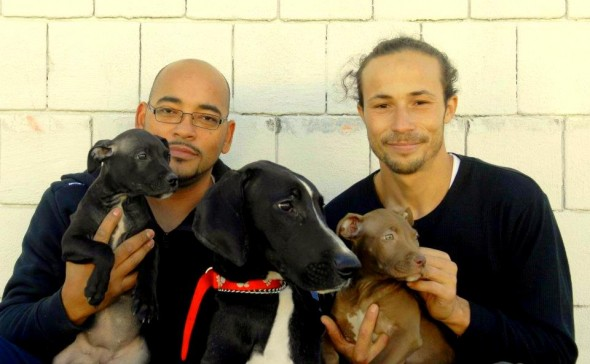 6.14.14 - Man Cashes in 401k to Save Shelter Dogs4