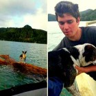 New Zealand Navy Rescues Dog Swept out to Sea