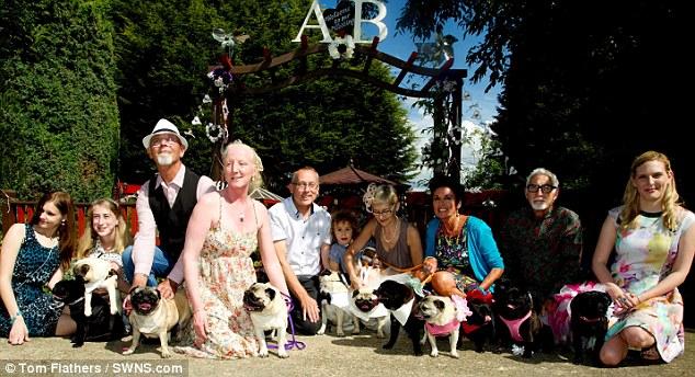 Love-struck Pugs Wed in Lavish Ceremony
