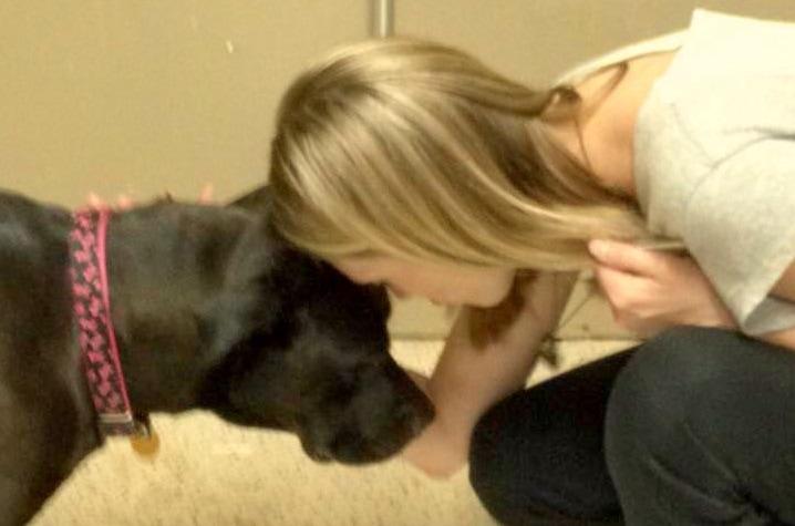 Padlocked Dog Left for Dead Frees Herself