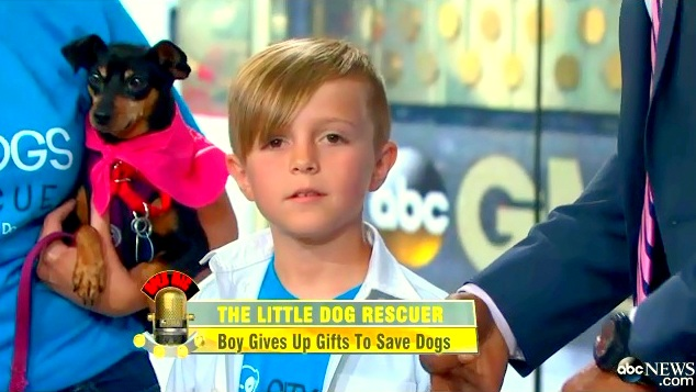 Kid Saves High-Kill Shelter Dogs for Birthday