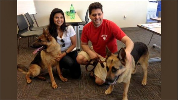 6.30.14 - UPDATE Dying Dog Rescued from Houston Highway Adopted1