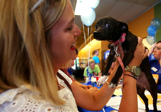 15,000 Animals Find Homes in Nationwide Adoption Marathon