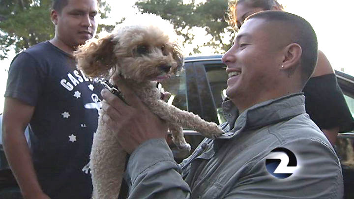 Victim of Armed Robbery Reunited with Service Dog