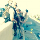 Police Rescue Dog from Highway Overpass on July 4th