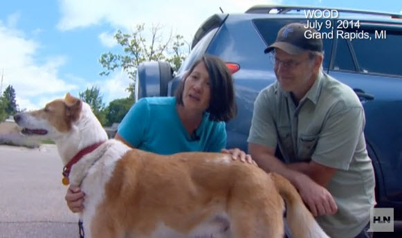 Dog Lost in Michigan Tornado Found Two Days Later