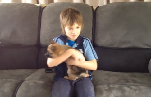 Community Reunite 9-Year-Old Boy with His Puppy