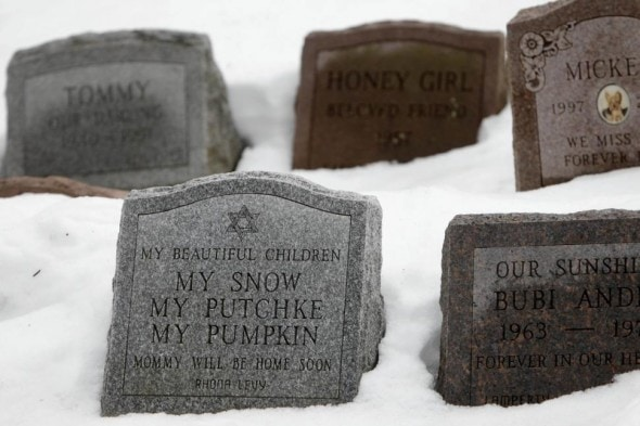 7.12.14 - New York Owners Can Now Be Buried Alongside Pets3