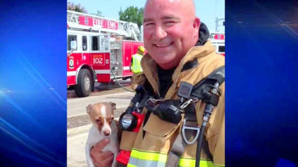 7.13.14 - Firefighter Revives Chihuahua After 30 Minutes of CPR1