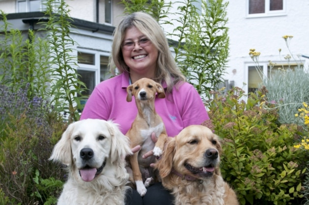 Woman sets up her own Charity to Rescue Unwanted Dogs