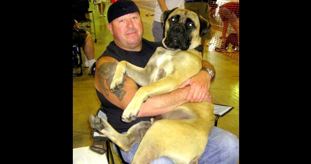 Good Samaritan Rescues Dog Involved in Fatal Crash