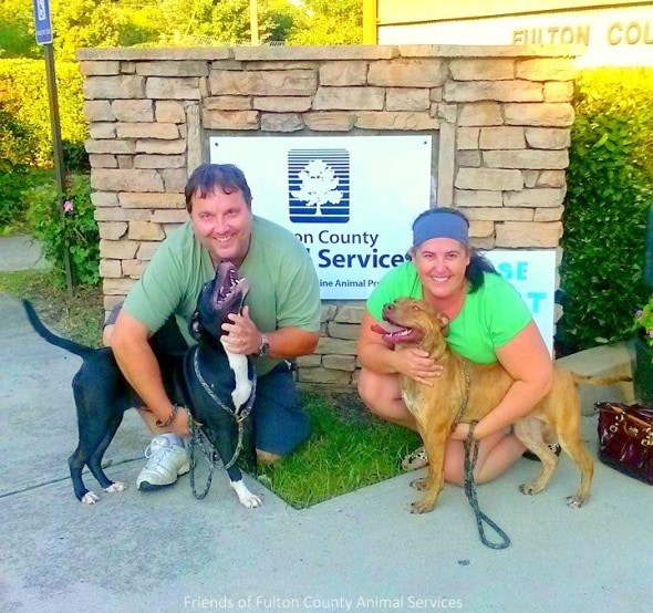 7.27.14 - Dogs Who Found Love at Shelter Get Adopted Together3
