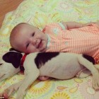 Ten-Month-Old baby and Puppy are best Friends