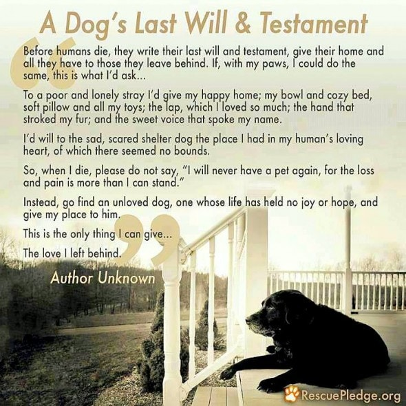 7.31.14 - Dog's Last Will & Testament2