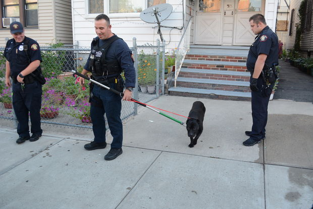 Jersey City Cops use Tranquilizer Instead of Bullets on Dog to Arrest Owner