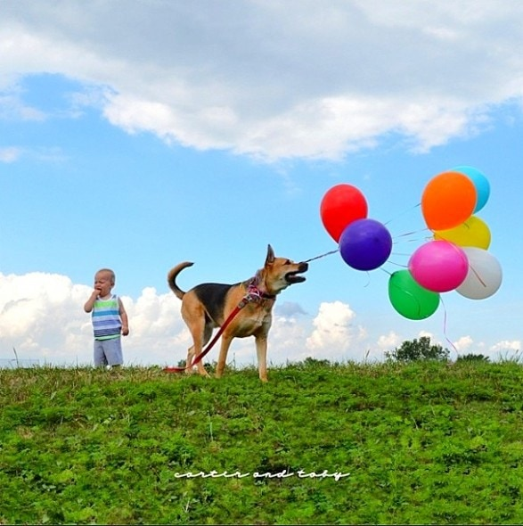 7.9.14 - Just a Boy and His Dog....1