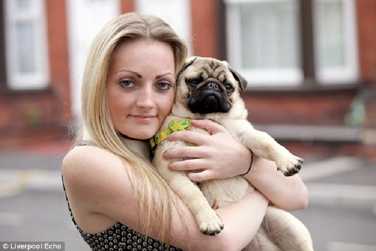 Stolen Pug Returned After Thieves are Named and Shamed at Facebook